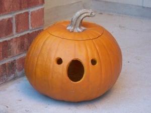 Karmic Pumpkin